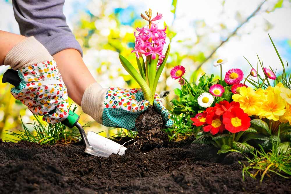 A kertépítés szebbé teszi a nyarat